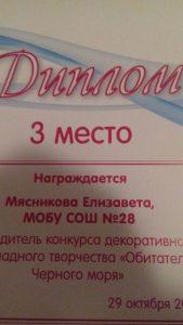 Мясникова Елизавета Диплом 3 место
